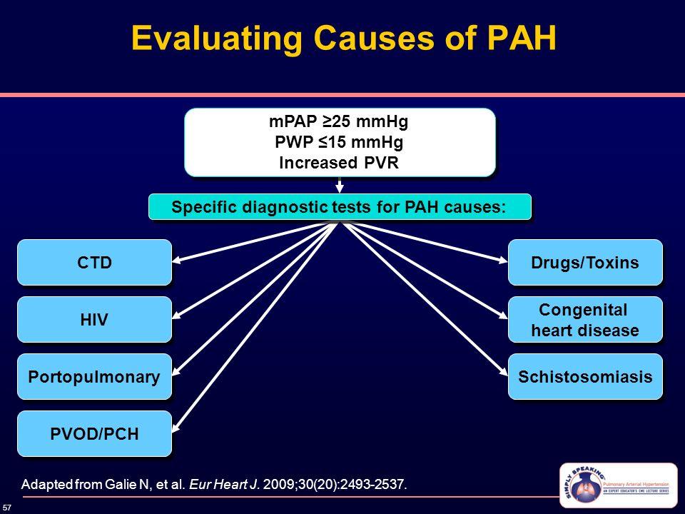 pulmonary hypertension guidelines 2015 ppt