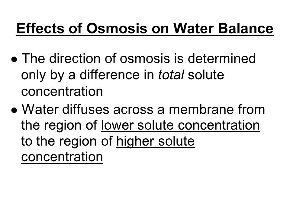 the effect of osmosis on the rate The rate of osmosis is dependent primarily upon the difference in osmotic pressures of the solutions on the two sides of a membrane, the permeability of the membrane, and the electric potential across the membrane and the charge upon the walls of the pores in it.
