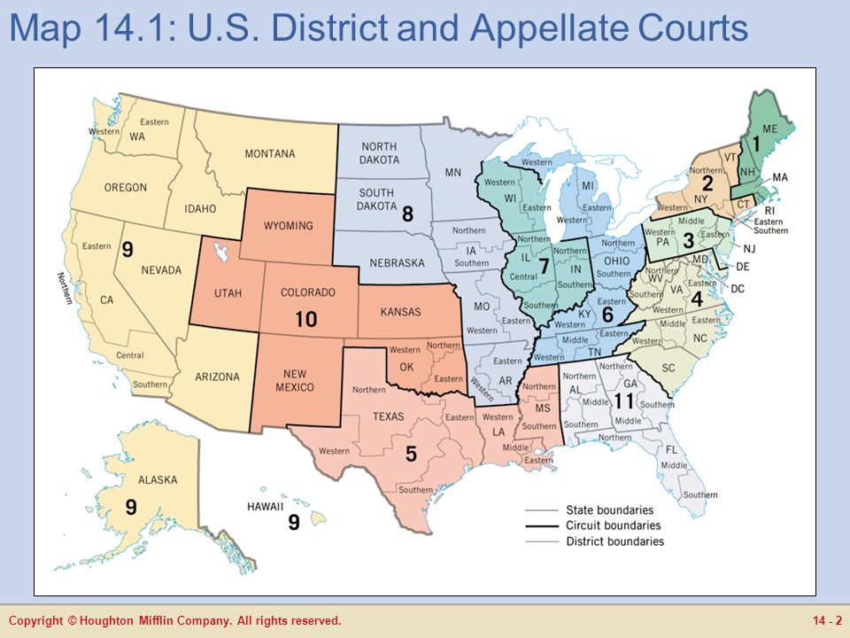 14 The Judiciary ppt download