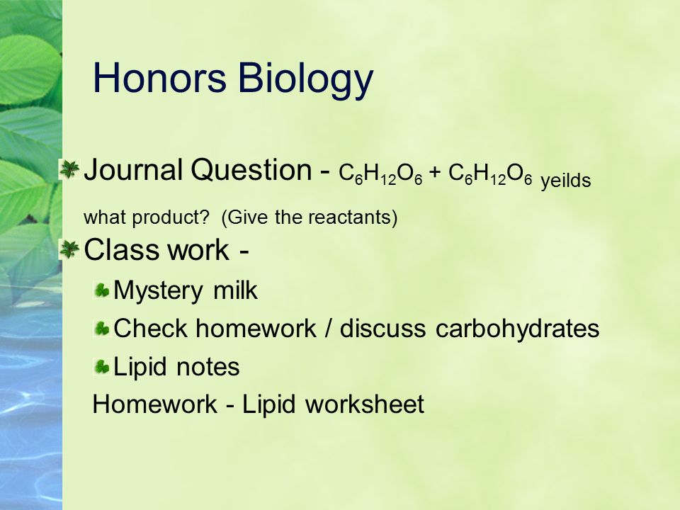 Sat essay themes and examples