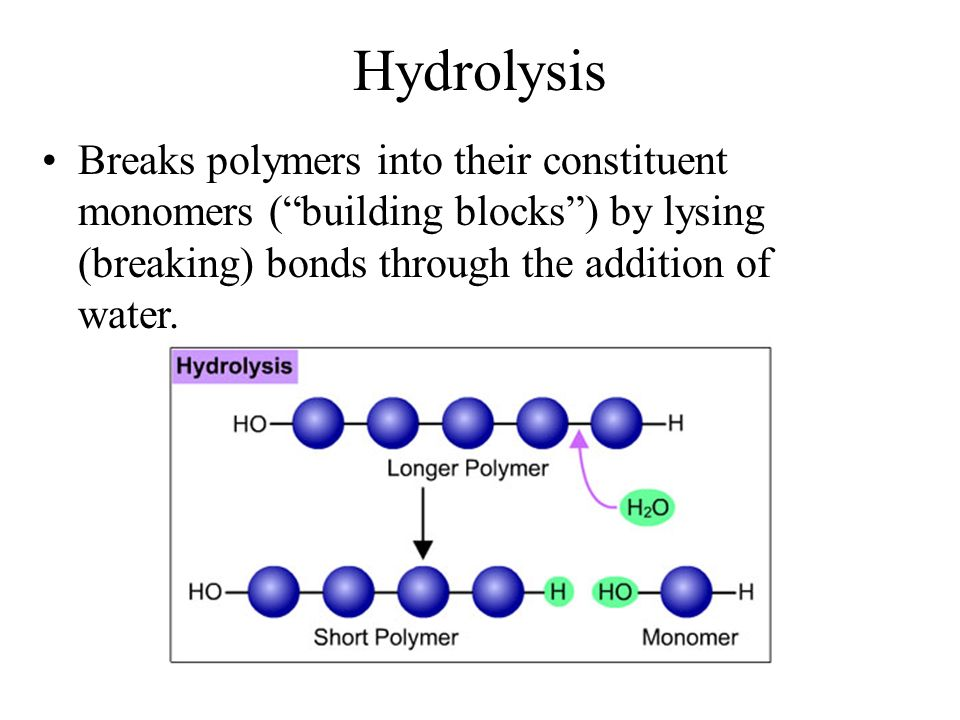 Building Blocks Polymers