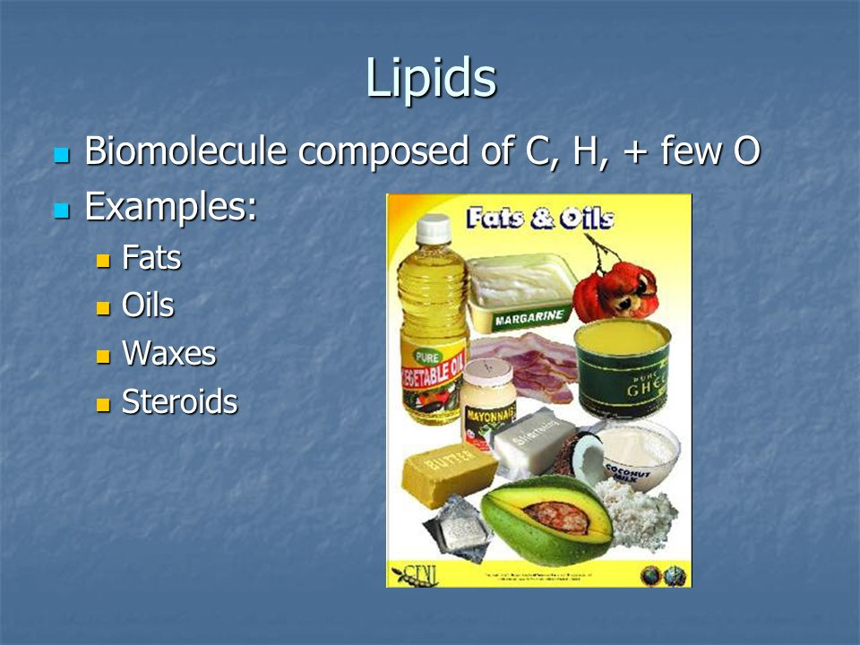 Lipids Biomolecule composed of C, H, + few O Examples: Fats Oils Waxes
