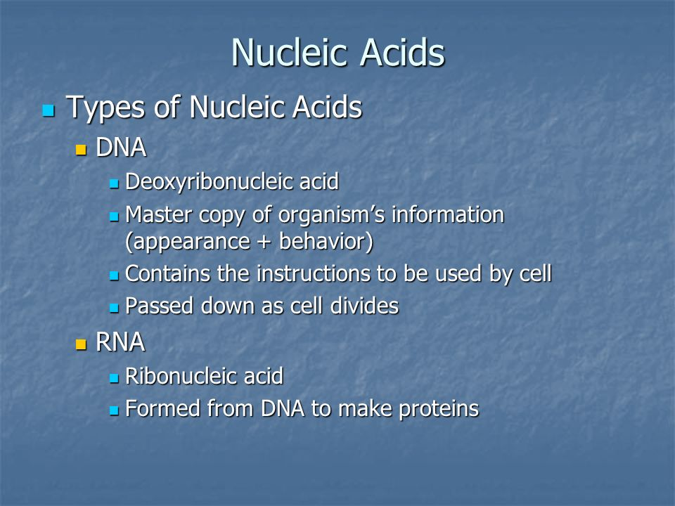 Nucleic Acids Types of Nucleic Acids DNA RNA Deoxyribonucleic acid