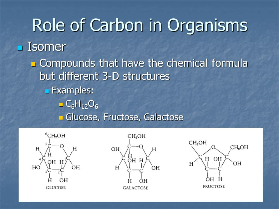 Role of Carbon in Organisms