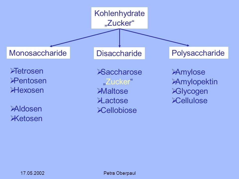 "Kohlenhydrate ""Zucker Monosaccharide Disaccharide Polysaccharide"