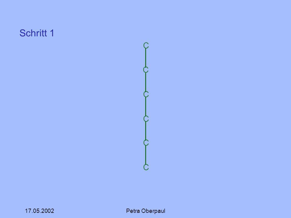 Schritt 1 C 17.05.2002 Petra Oberpaul