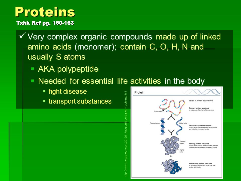 Proteins Txbk Ref pg Very complex organic compounds made up of linked amino acids (monomer); contain C, O, H, N and usually S atoms.