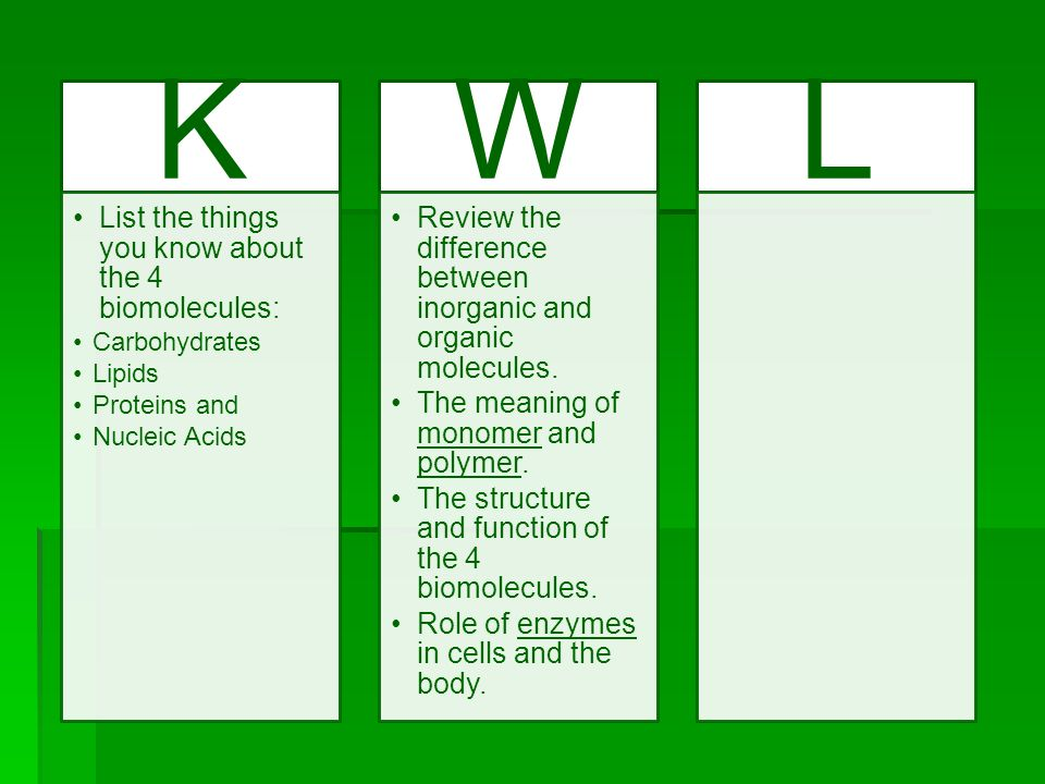 K W L List the things you know about the 4 biomolecules: