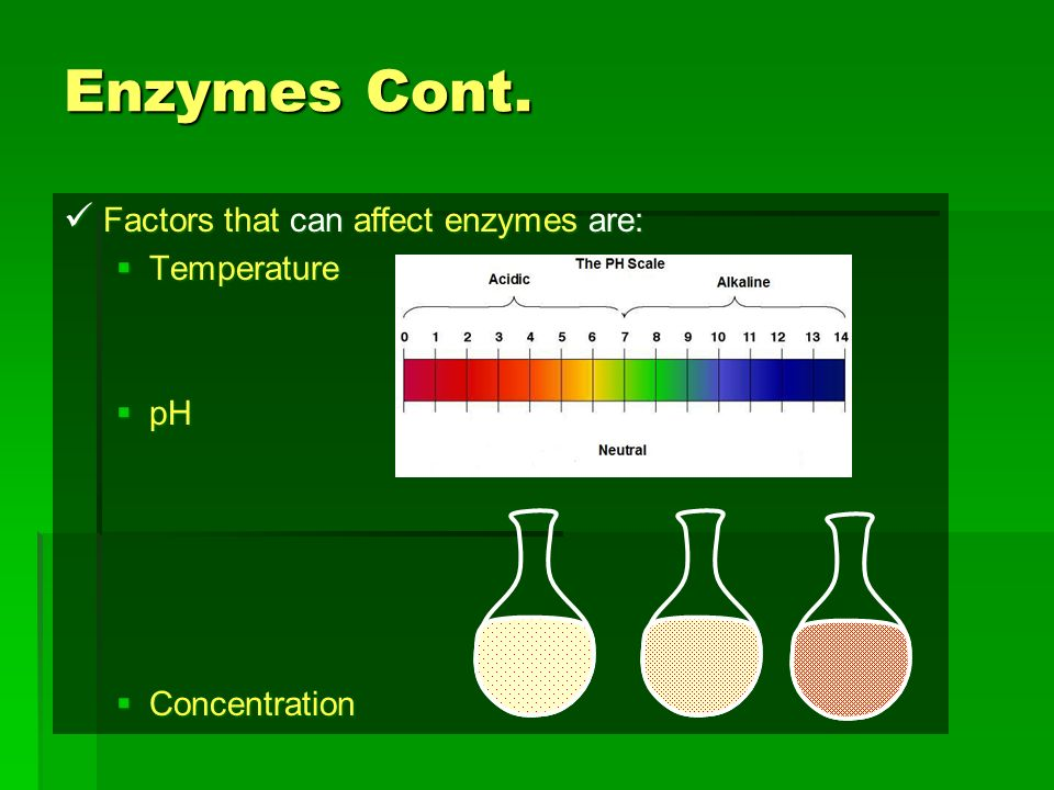Enzymes Cont. Factors that can affect enzymes are: Temperature pH