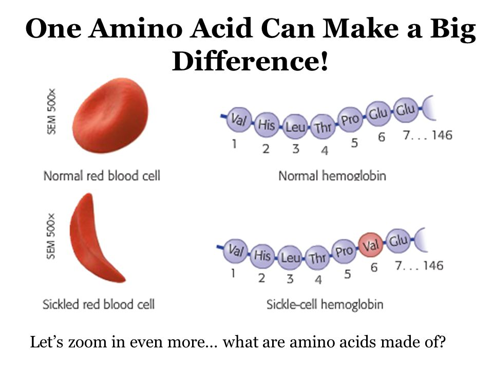 how to make an amino