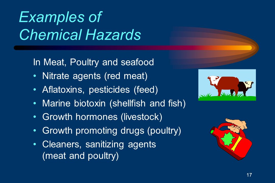 Understanding HACCP Mo...