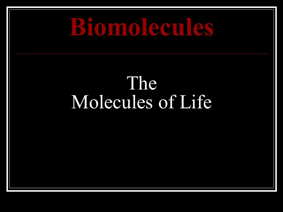 Biomolecules The Molecules of Life