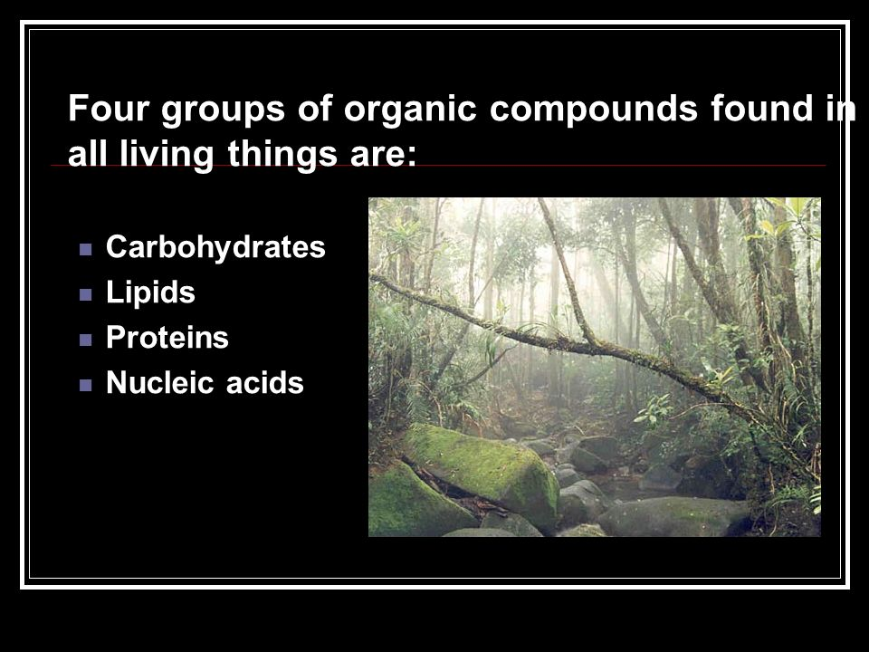 Four groups of organic compounds found in all living things are: