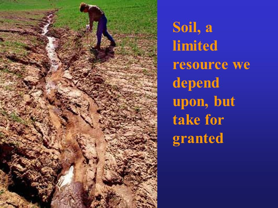 Food and soil resources ppt video online download for About soil resources