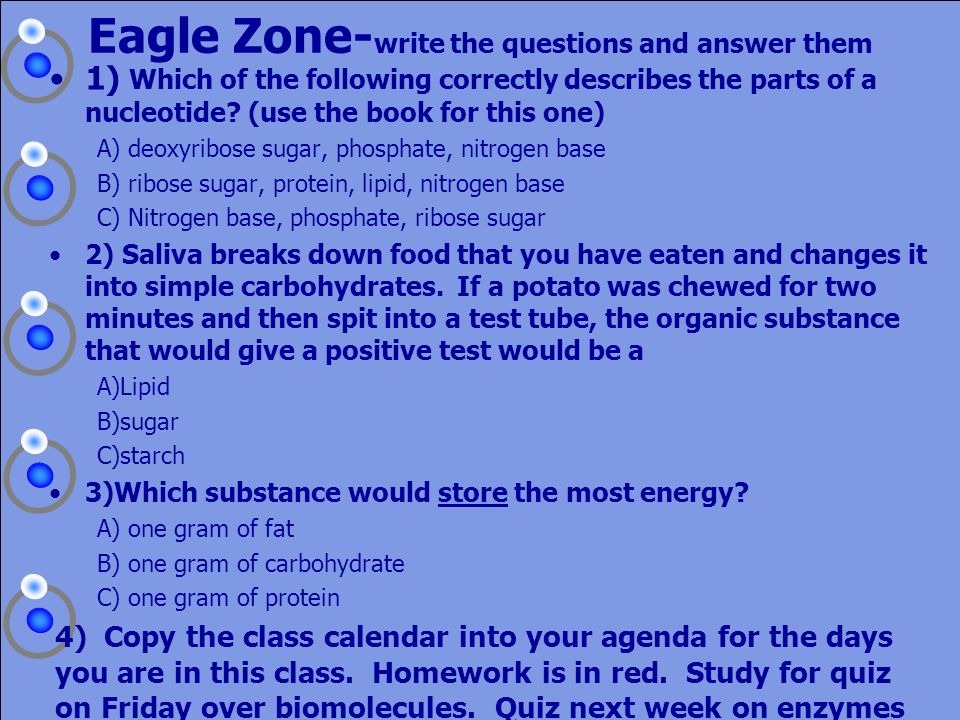 Eagle Zone-write the questions and answer them