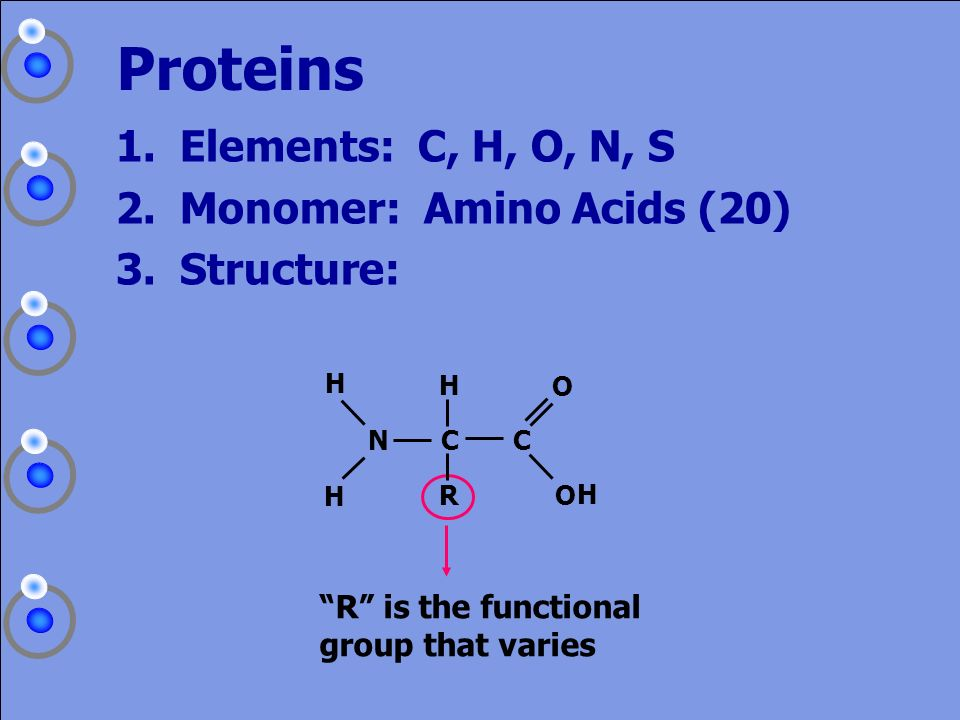 Proteins Elements: C, H, O, N, S Monomer: Amino Acids (20) Structure:
