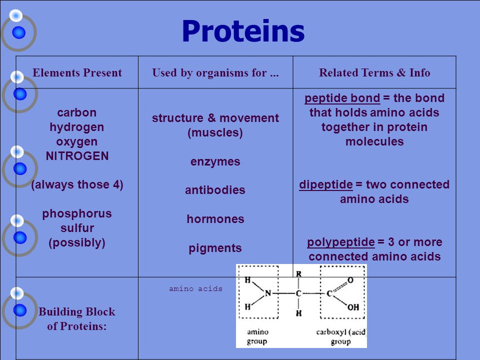 Proteins Elements Present Used by organisms for ...