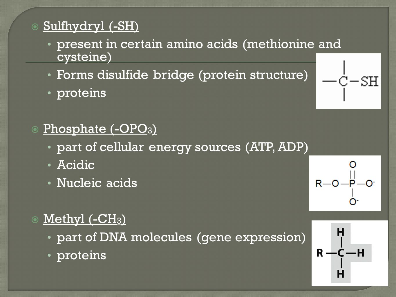 Biochemistry Chapters ppt download