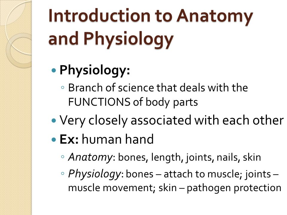 Fein Introduction To Human Anatomy And Physiology Study Guide Fotos ...