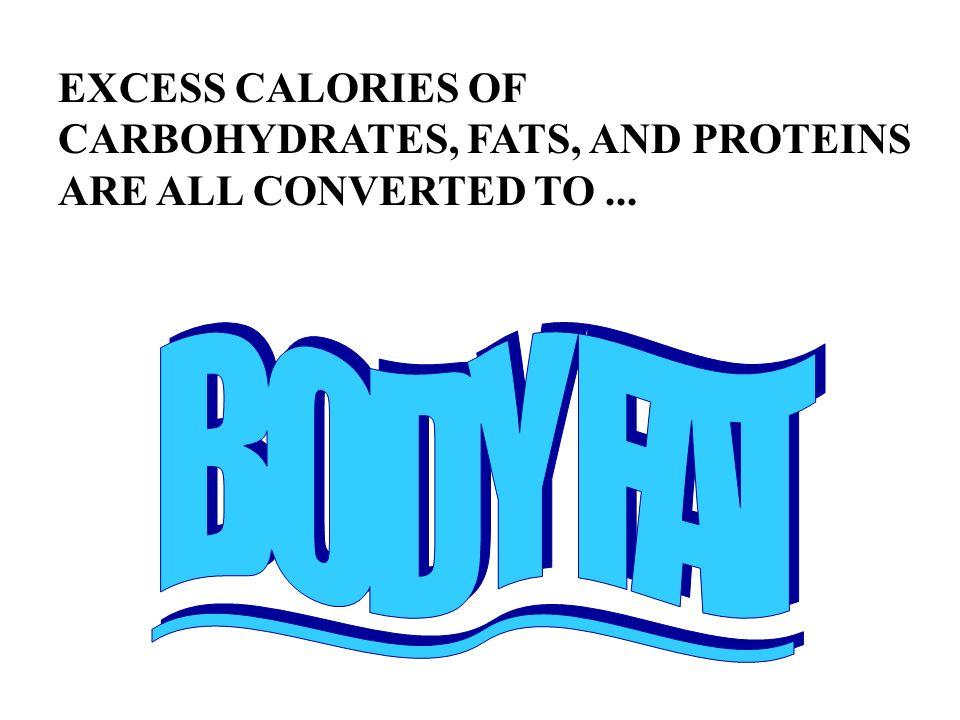 EXCESS CALORIES OF CARBOHYDRATES, FATS, AND PROTEINS ARE ALL CONVERTED TO ...
