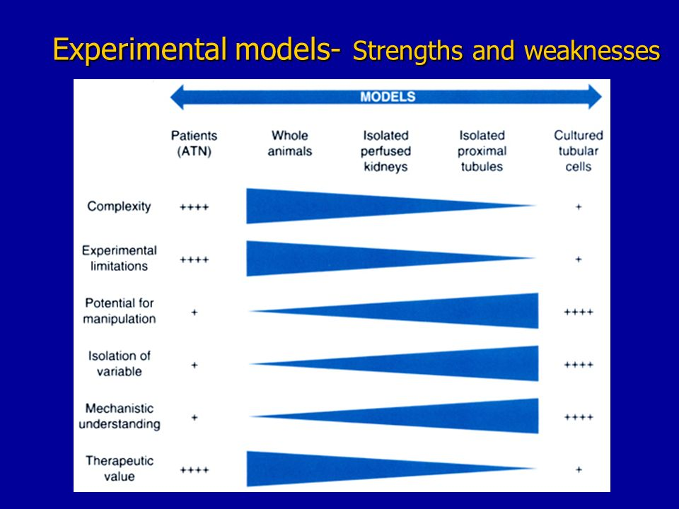 flamholtz model strength weakness Strengths, weaknesses, and combinations of model-based and model-free reinforcement learning by kavosh asadi atui a thesis submitted in partial fulfillment of the requirements for the degree of master of science department of computing science university of alberta c kavosh asadi atui, 2015.