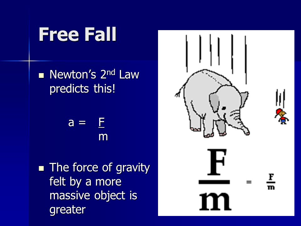 Free Fall Newton's 2nd Law predicts this! a = F m