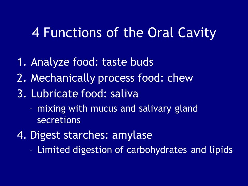 Function of the oral cavity eyes