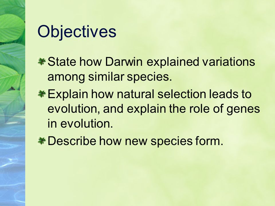 Natural Selection That Leads To New Species