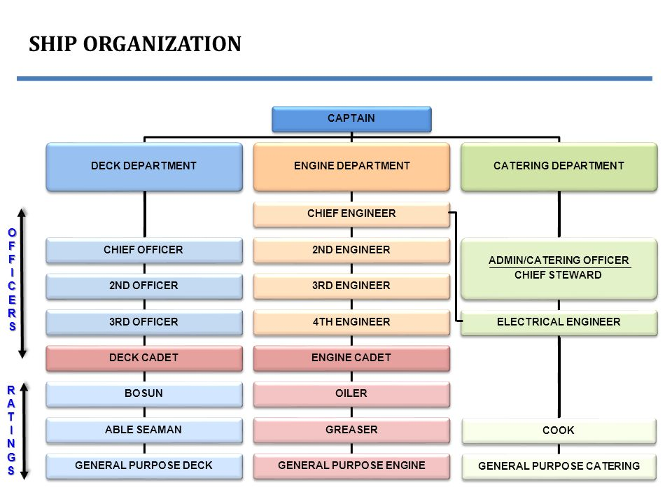 organizational chart of steward department The salary structure of both engine and deck departments is almost the same  while there were some differences earlier with regard to salaries,.