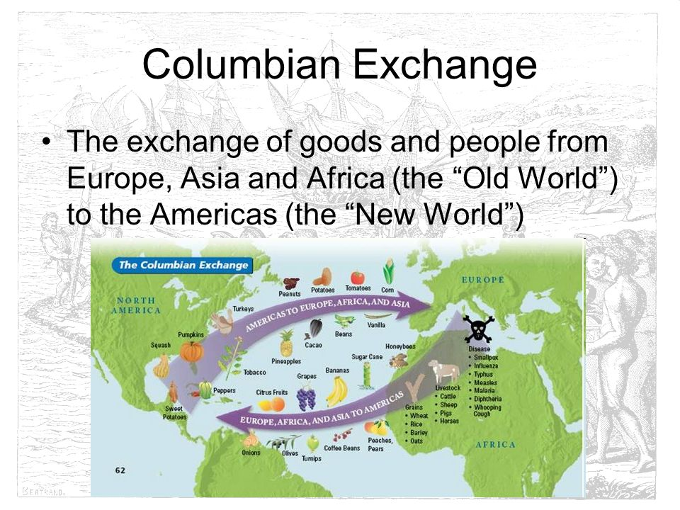 columbian exchange europe and the americas Even before looking at all of these ideas, remember that europeans and asians first actually found their way to the americas in the stone age these people are the ancestors of native americans the thing is, you cannot discount the importance of columbus in history for the good and the bad, his discovery lead to greater.