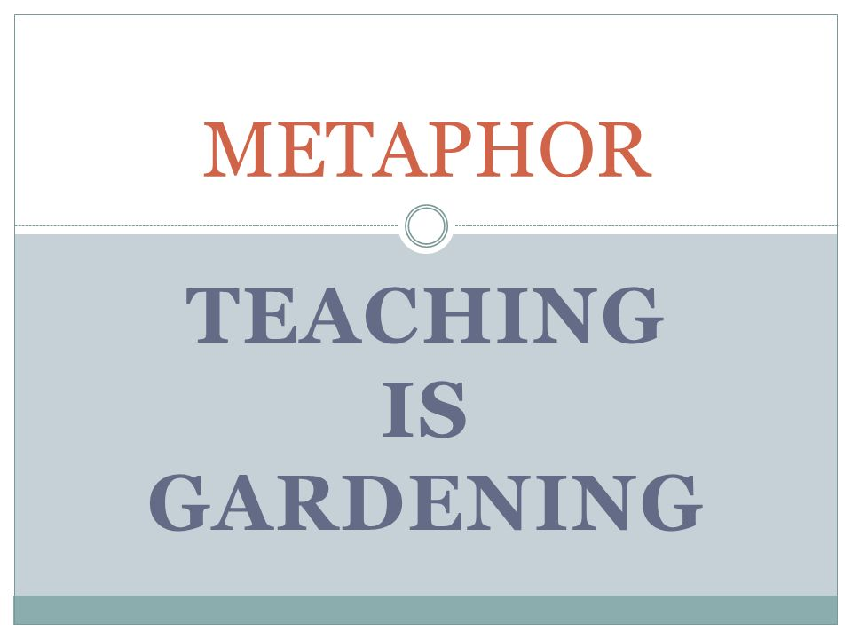 Teacher Metaphor