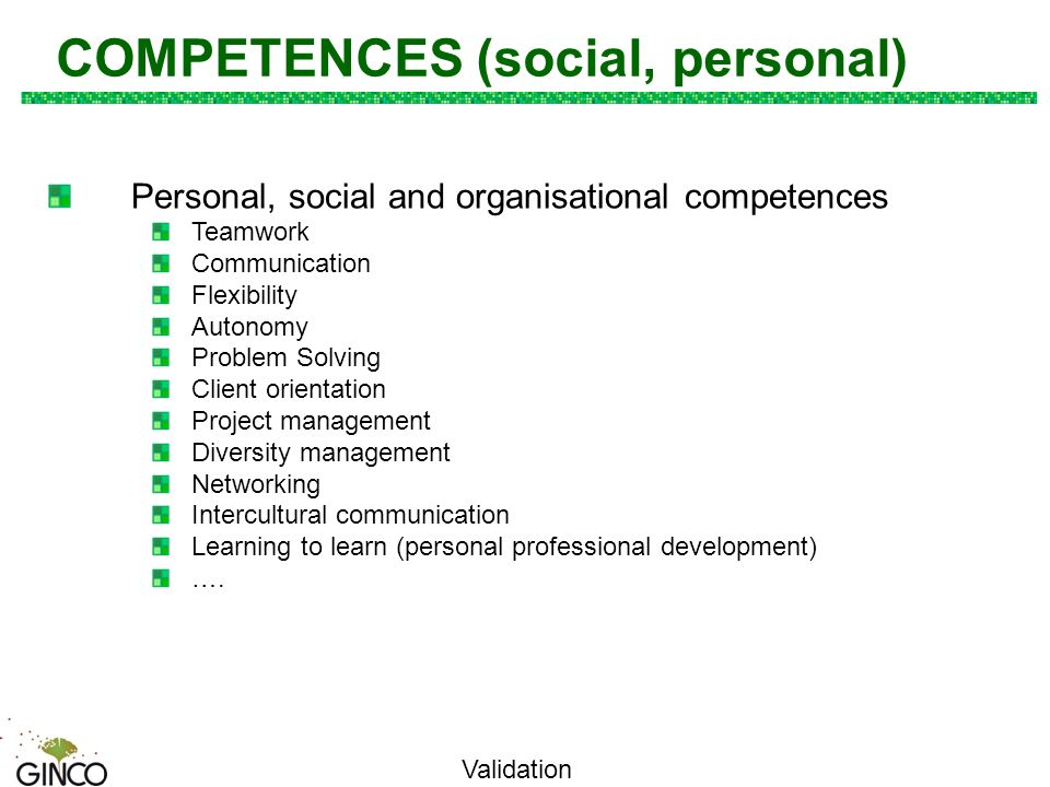 cv examples organisational skills and competences