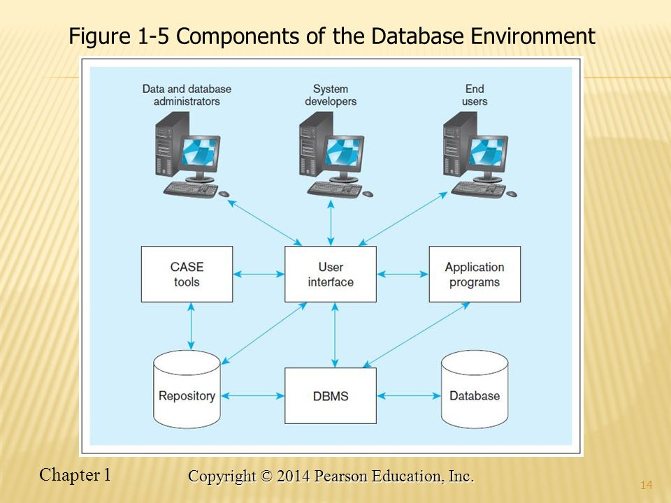 Figure 1-5 Components of the Database Environment