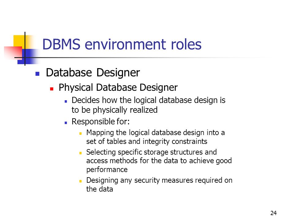dbms environment roles - What Is Database Designer