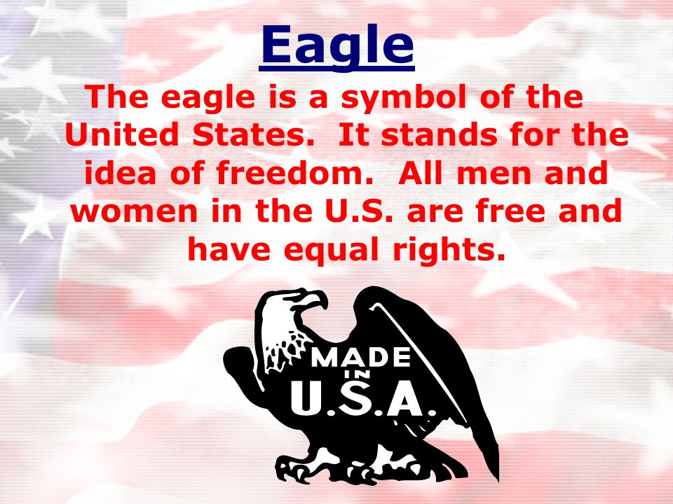 Eagle The eagle is a symbol of the United States. It stands for the idea of freedom.