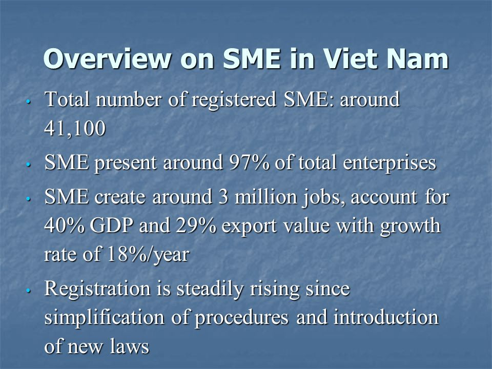 Overview on SME in Viet Nam