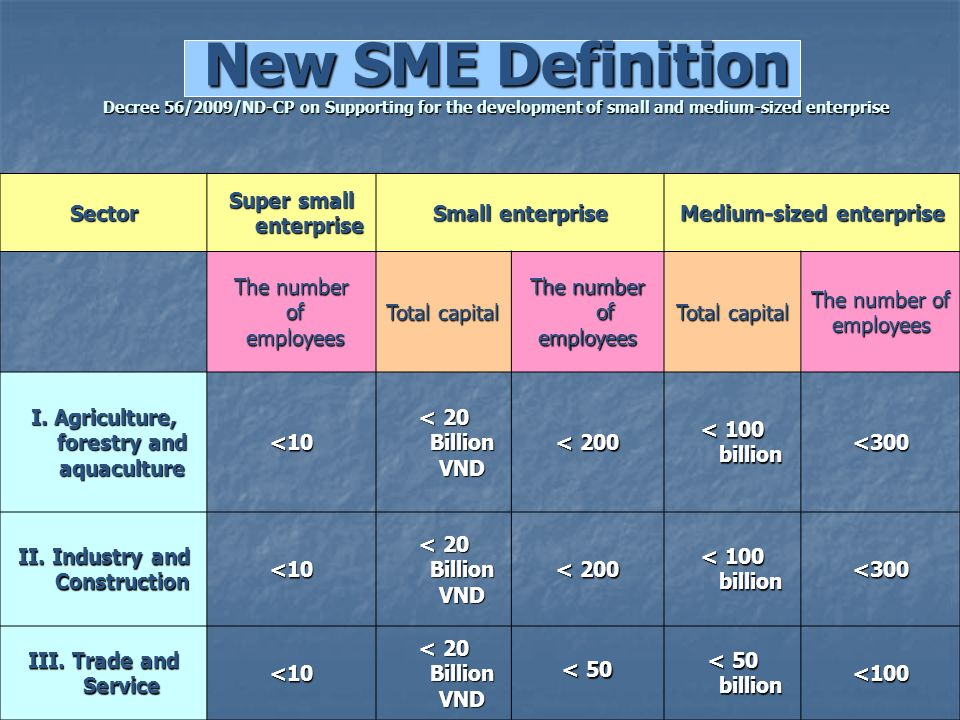 New SME Definition Decree 56/2009/ND-CP on Supporting for the development of small and medium-sized enterprise
