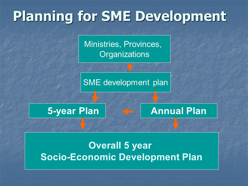 Planning for SME Development