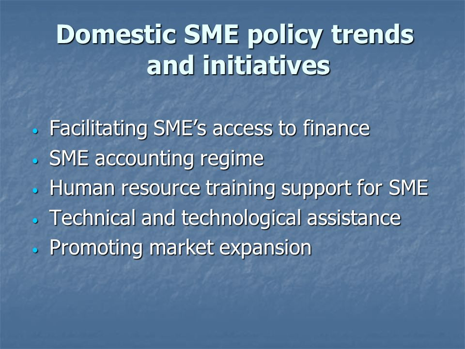 Domestic SME policy trends and initiatives