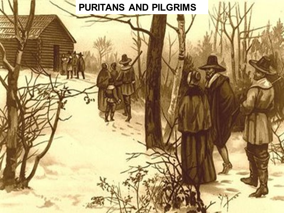 early puritan and pilgrim literature What's the difference between a pilgrim and a puritan  sachems massasoit of the wampanoags and canonicus of the narragansetts reluctantly welcomed early.