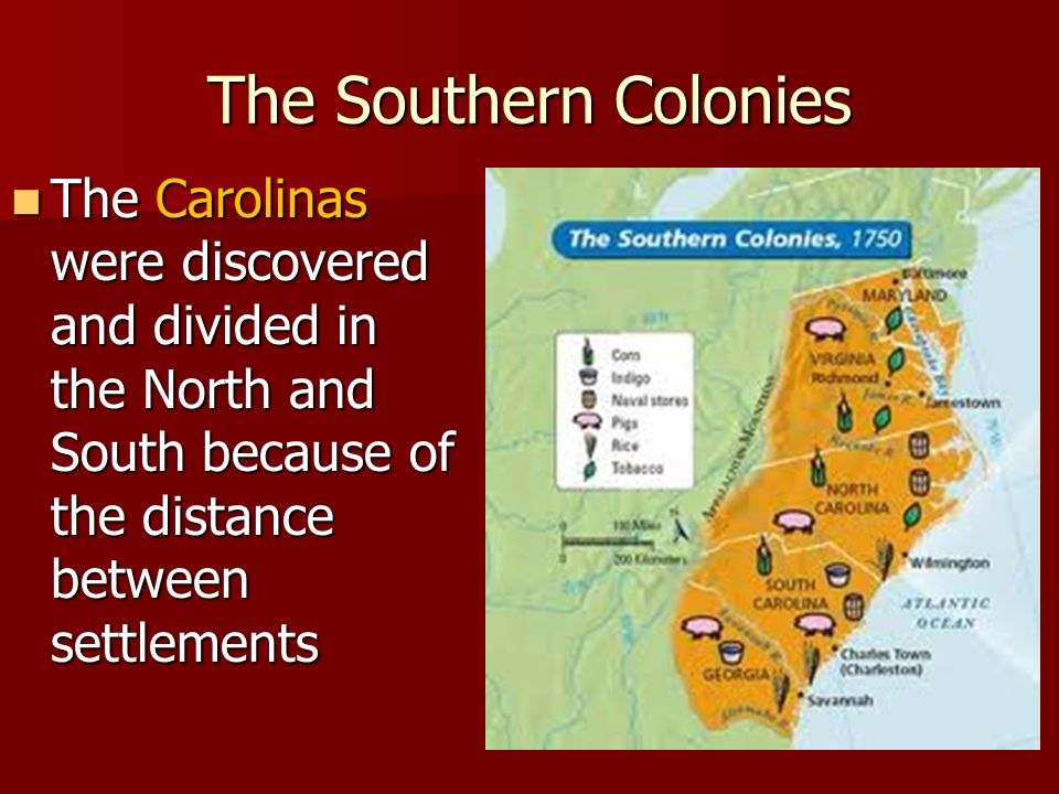 The Southern Colonies The Carolinas were discovered and divided in the North and South because of the distance between settlements.