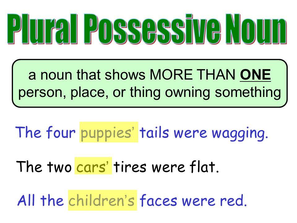Singular And Plural Possessives Lessons Tes Teach