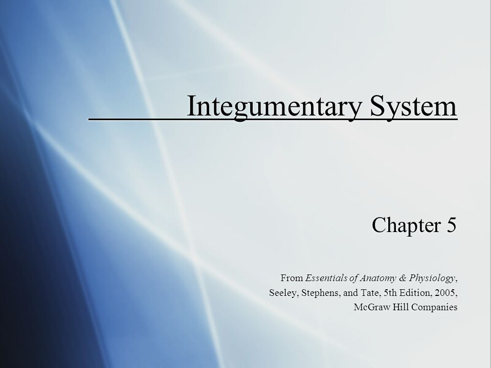 Integumentary System Chapter 5 - ppt video online download