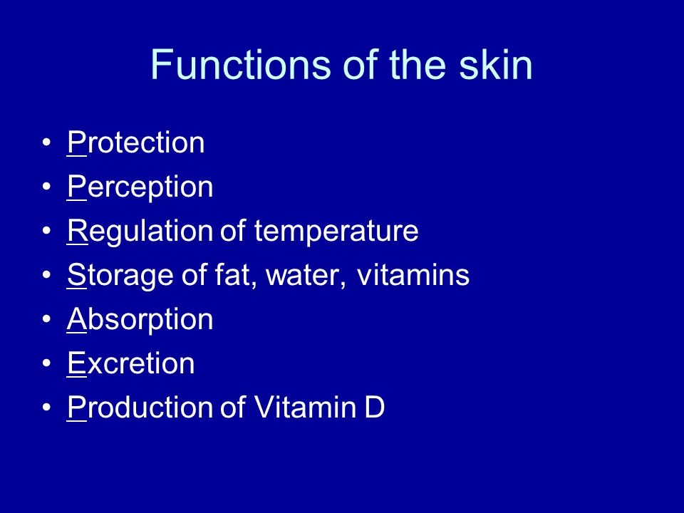 Functions of the skin Protection Perception Regulation of temperature
