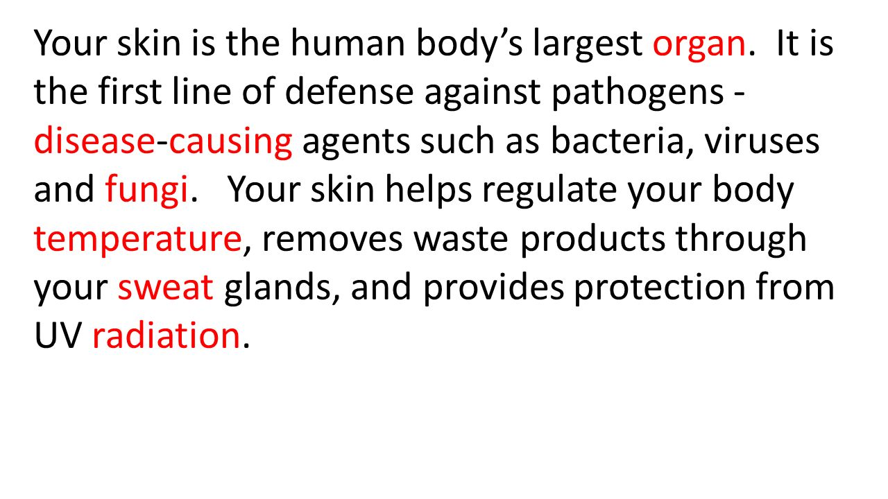 Your skin is the human body's largest organ