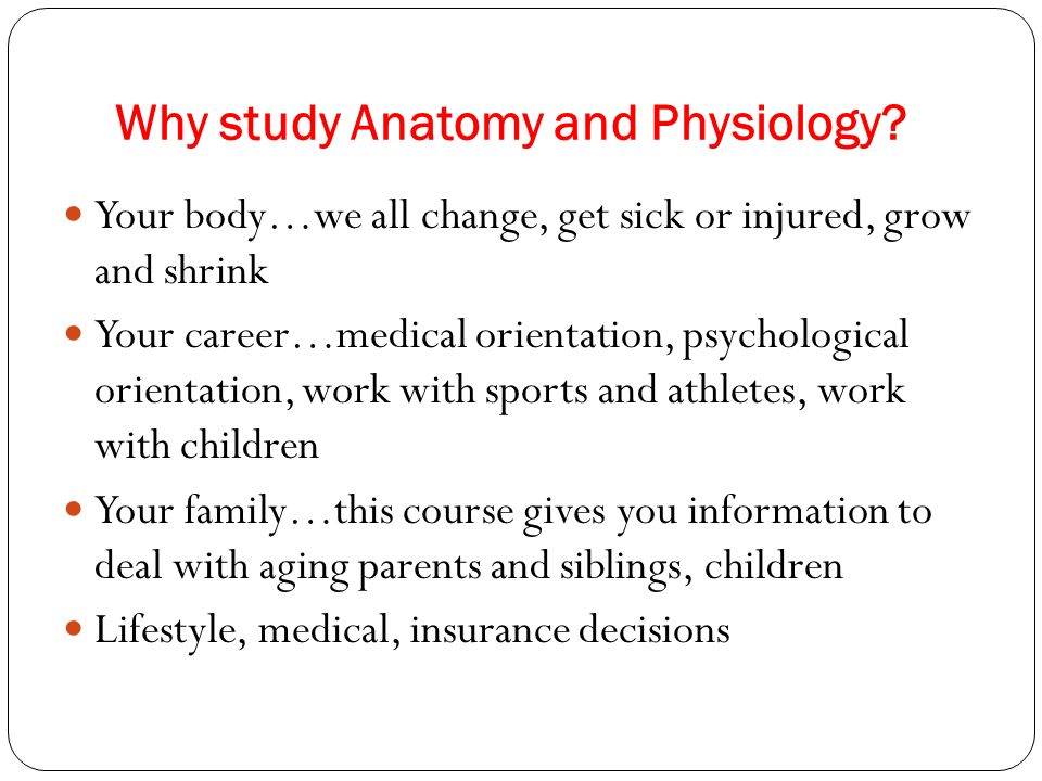 Großzügig Why Study Anatomy And Physiology Fotos - Menschliche ...