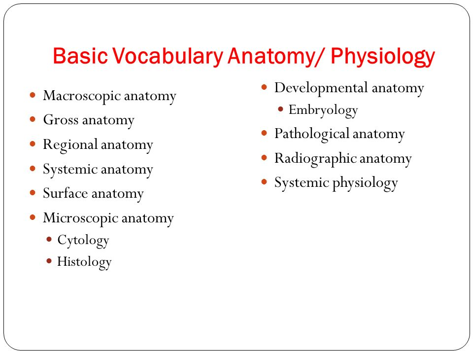 Anatomy and physiology vocab | Homework Academic Writing Service ...