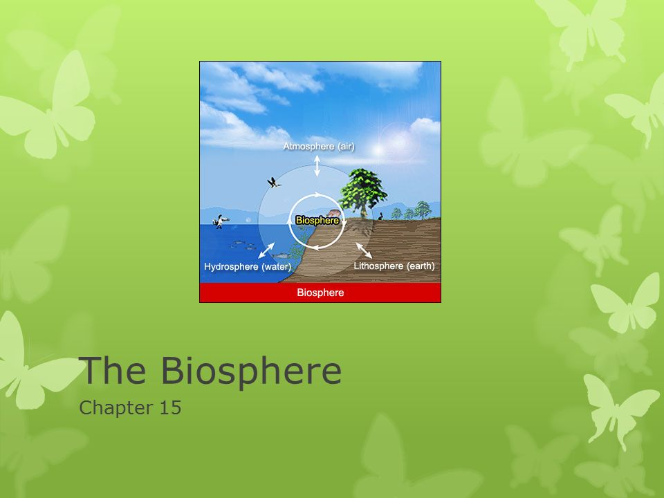 What Are the 3 Parts of the Biosphere?