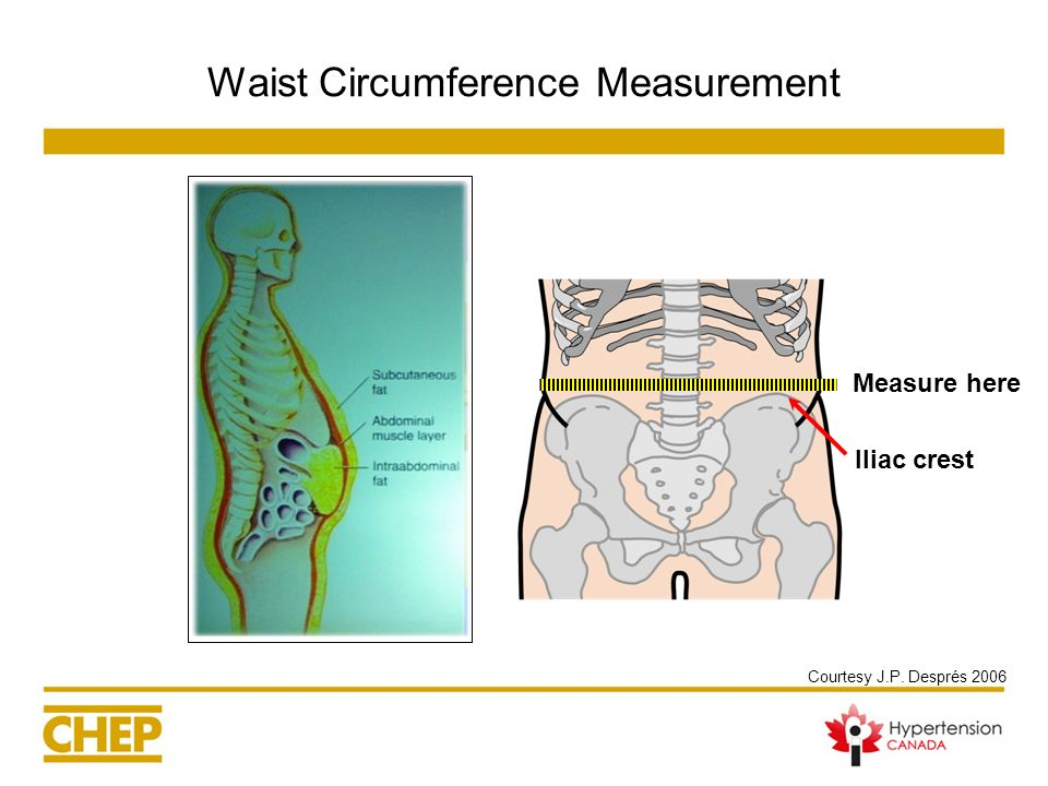 Waist Circumference Measurement
