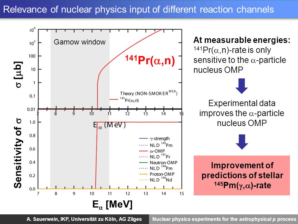 Relevance of nuclear physics input of different reaction channels